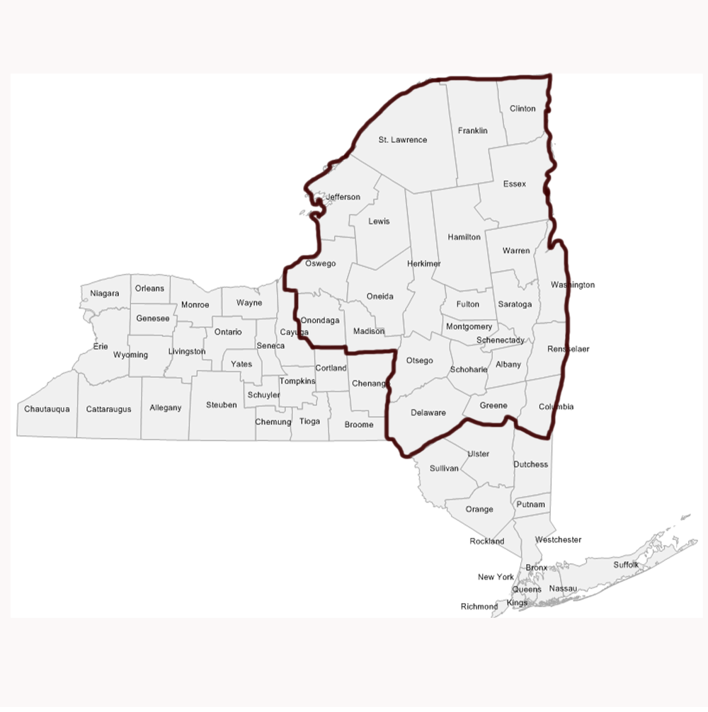 Ny Upstate County Map